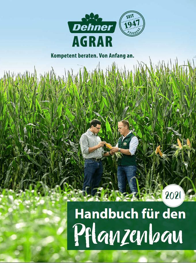 Cover Handbuch 2021