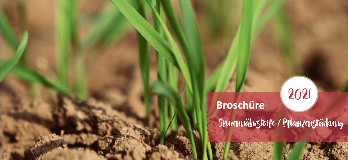Spurennährstoffe Pflanzenstärkung 2021